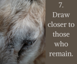 7. Draw closer to those who remain
